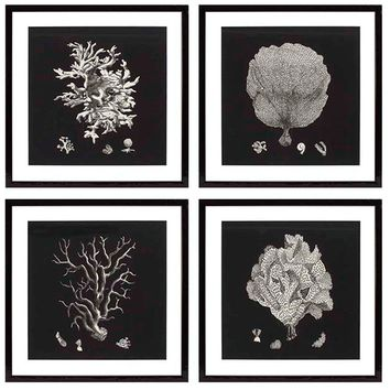 Eichholtz Black and Tan Corals Print  (set of 4)