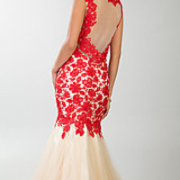 Floor Length Sleeveless Lace Dress