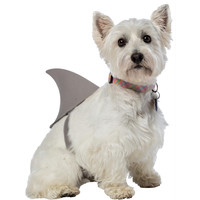 Shark Fin Dog Costume Xl/xxl