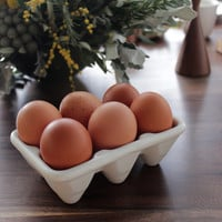 Ceramic Egg Crate for Half Dozen