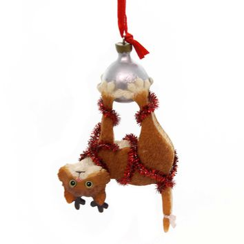 Holiday Ornaments HANGING TIGHT CAT Polyresin Gary Patterson 6000457