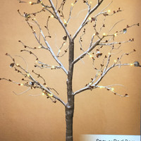 4ft Lighted Led Tree with Brown / Gray Branches With Snowy Berries