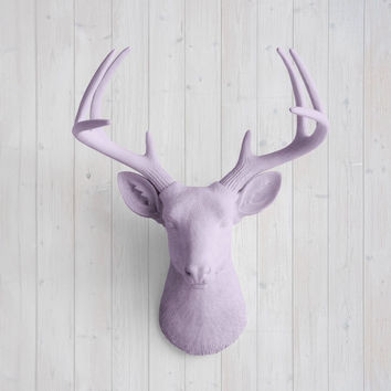 The Virginia Large Lavender Faux Taxidermy Resin Deer Head Wall Mount | Lavender Stag w/ Colored Antlers