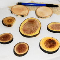 Natural cabochon jewelry supplies wood slices mix. Wooden discs mix. Various wood types sizes. Circle wooden tags, jewelry supplies findings