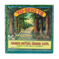 Handmade Coaster Yosemite Brand - Vintage Citrus Crate Label - Handmade Recycled Tile Coaster