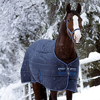 Amigo Insulator Stable Blanket - Stable Blankets from SmartPak Equine