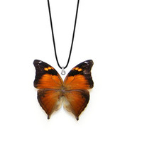 Real Autumn Leaf Butterfly Necklace