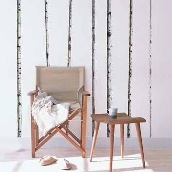 wall decals - Summer Birch Trees