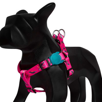 Paradise | Dog Harness