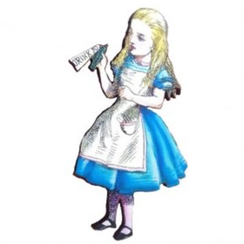 Drink Me Alice Holds A Bottle From Alice In Wonderland Wooden Brooch Unbirthday Mad Hatters Tea Party Gift