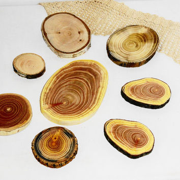 Natural wood slices discs, rustic weddings, jewelry supplies, jewelry findings, jewellery making parts. Nature wooden texture, colors. WOOD.