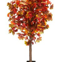 Buy Lit Gingko Tree from the Next UK online shop