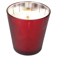 Nature's Wick Holiday Cheer Container Candle