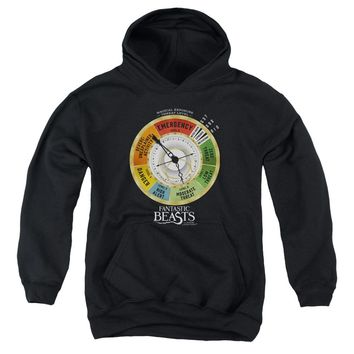 Fantastic Beasts - Threat Gauge Youth Pull Over Hoodie