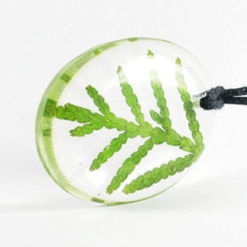 Real Pressed Thuja Encased in Resin, Resin Jewelry, Teardrop Pendant, Pressed Flower Jewelry, Green Thuja Necklace, Adorable Resin Jewelry