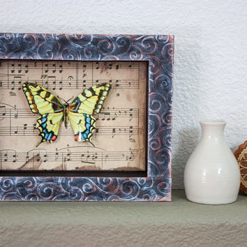Paper Butterfly Display Shadow Box - Home Decor Framed Art Decoration