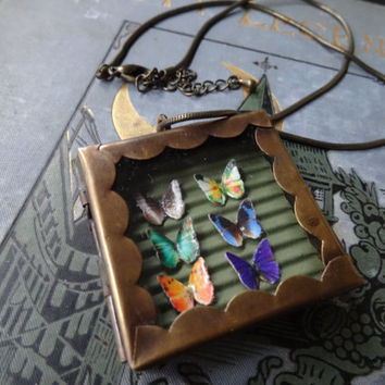 1- Butterfly Display Necklace Insect Specimen Shadow Box One of a Kind Unique Miniature 6 Butterflies Glass Locket Finished Necklace