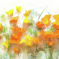 Sunrise Poppies by Susan Eileen Evans
