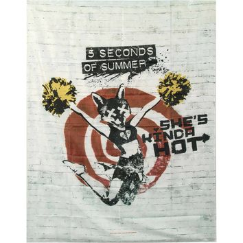 5 Seconds Of Summer Poster Flag