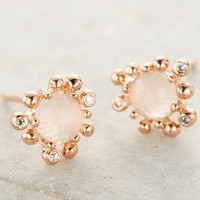 Urchin Studs by Anthropologie Rose One Size Earrings