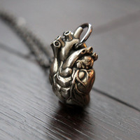 Anatomical Human Heart Pendant Necklace  in Solid White Bronze