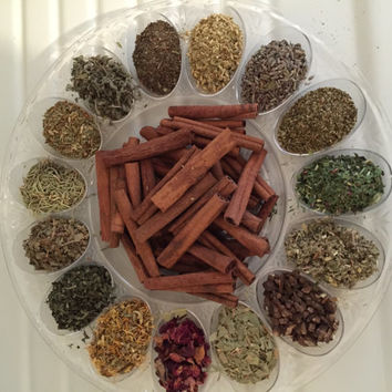 UTI YEAST Infection Blend 1(4x6) Bag (Oregano, Eucalyptus, Burdock, Red Clover, Yellow Dock)
