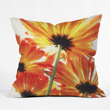 Shannon Clark Orange Daisies Outdoor Throw Pillow
