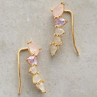 Lilac Crawler Earrings