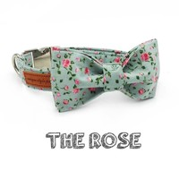 The Pretty Rose Isla Rivera Dog Collar and Leash Set