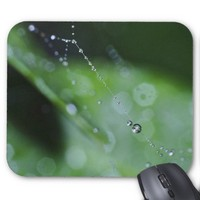 MousePad: Moment in the Forest Mouse Pad