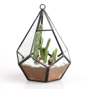 Geometric Diamond Shape Irregular Glass Hanging Terrarium Box