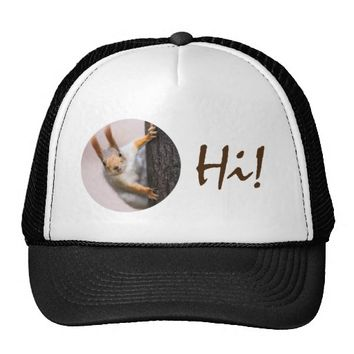 Curious squirrel trucker hat