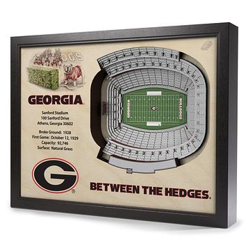 Georgia Bulldogs 25-Layer StadiumView 3D Wall Art