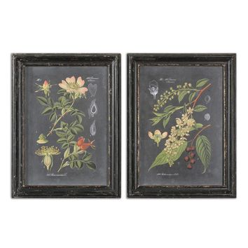 Midnight Botanicals Wall Art Set 2 By Uttermost