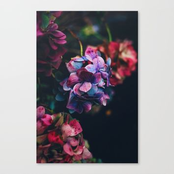 Treasure of Nature Canvas Print by Mixed Imagery