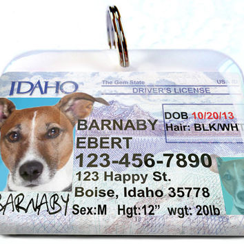 Idaho driver license New Personalized Custom ID Tags for dogs and cats Double Sided pet tags