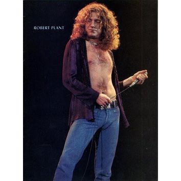 Robert Plant Mini Poster 11Inx17In