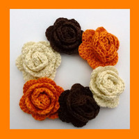 6 crochet roses, appliques and embellishments