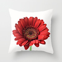 Red Pillow Cover Home Decor Cushion Cover Gerbera Daisy Photography Print Polyester Crimson Red Black White Pillow Case