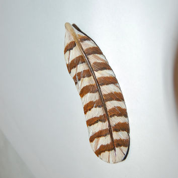 Wood feather brooch, hand carved feather, wooden pin, feather brooch, owl brooch, feather gift, wood carving, handmade brooch, birder gift
