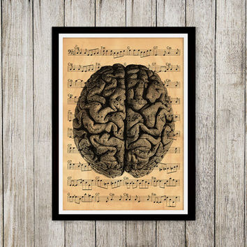 Anatomy print Brain poster Music notes art Old paper print NP100