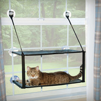 K&H Manufacturing Kitty Sill Double Stack Ez Window Mount Cat Perch & Reviews | Wayfair