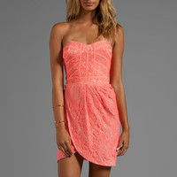 Finders Keepers Somerset Dress in Sherbert