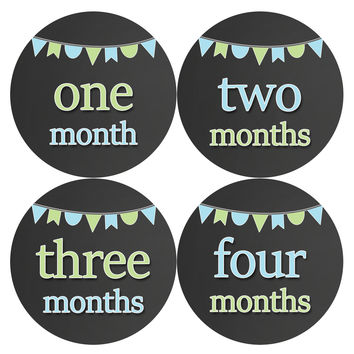Baby Boy Monthly Milestone Age Stickers Style #335
