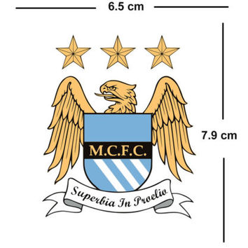 Manchester city Team Crest Iron on Screen Print fabric Machine Washable transfer | eBay