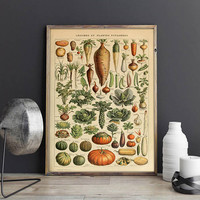 Vegetables Wall Art Print| Vegetables Diagram| Pictorial Vegetables Poster| Educational Chart| Kitchen Decor| Affiche Legumes| HBA017