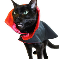 Cat Halloween Costume Dracula Vampire Cat Costume Cape Halloween Costume Cat Clothes Pet Costume
