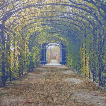 Leafy Archway With Blurred Textures Backdrop 5x6 - LCTCSL343 - LAST CALL