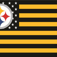Pittsburgh Steelers 3 X 5 Foot Stars & Stripes Flag Banner