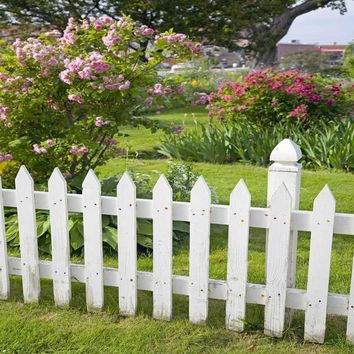 Printed White Picket Fence Backdrop 10x10 - LCPC454 - LAST CALL